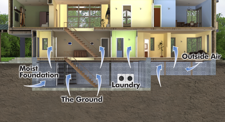 Common areas with crawl space problems