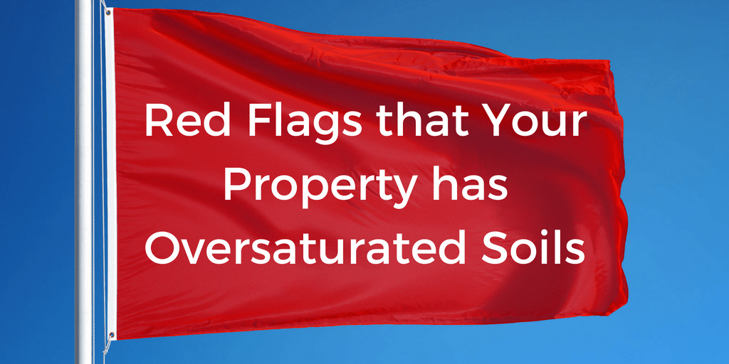 Red Flags that Your Property has Oversaturated Soils