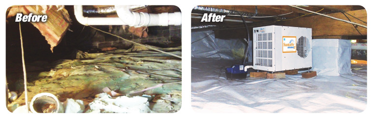 Before and after photo of a moldy crawlspace.
